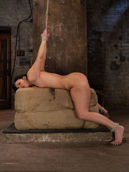 During bondage Ashli Orion gets hogtied and forced to suck and deep-throat her masters cock.