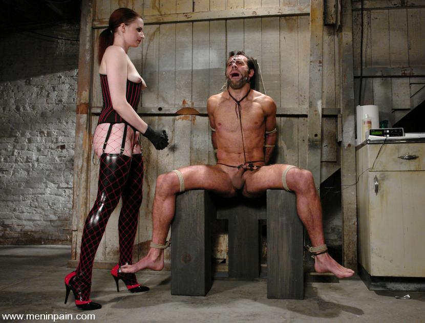 Female Dom Cock Training Tube