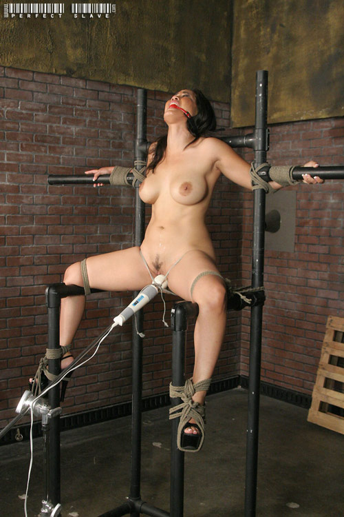 Slave in metal frame and scolds bridle 9