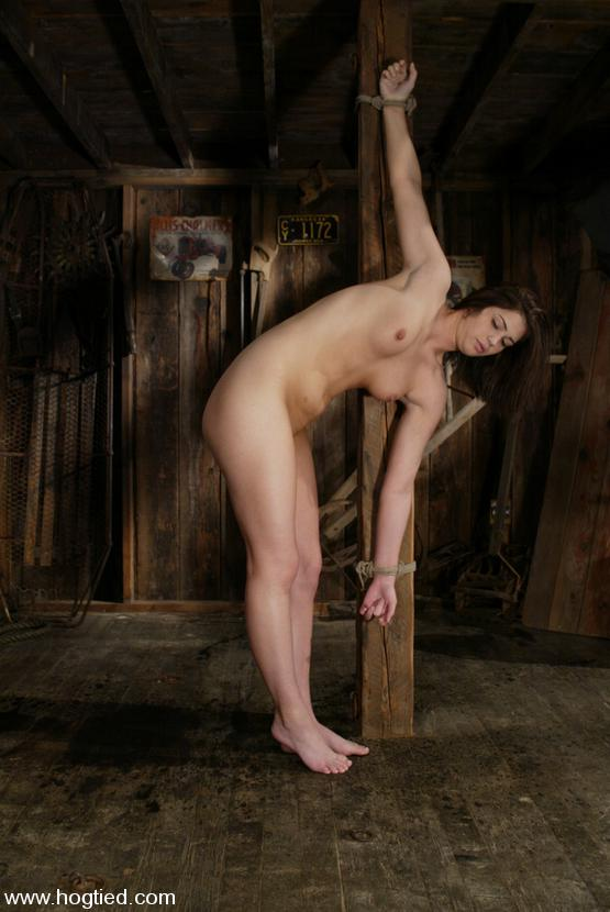 sexual positions and furniture