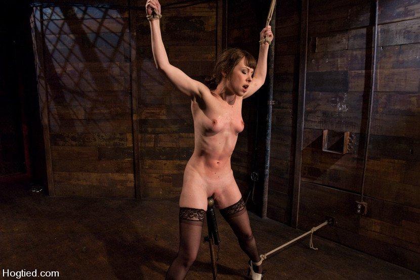 The hungry femmes porno