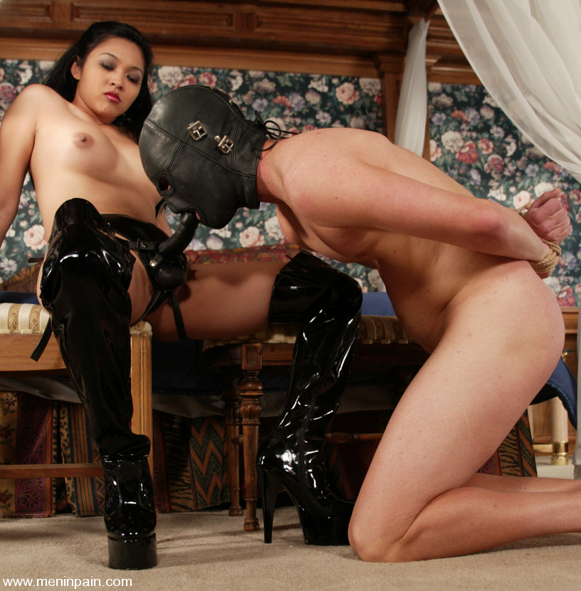 Whip Pictures  whip Porn Pictures galleries at