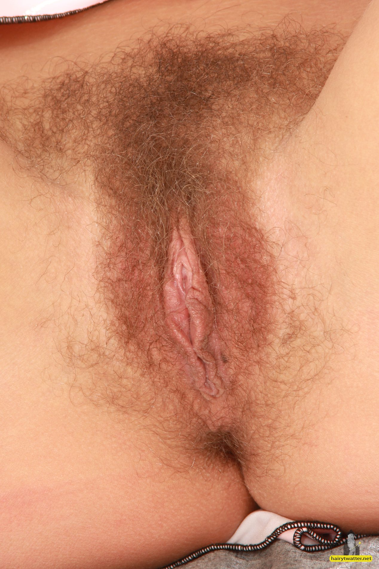 Close up of hairy pussy