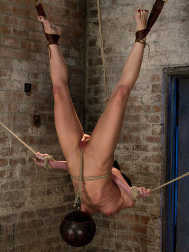 Elise Graves is a skinny chick who loves to hang upside down while her shaved pussy is slammed.