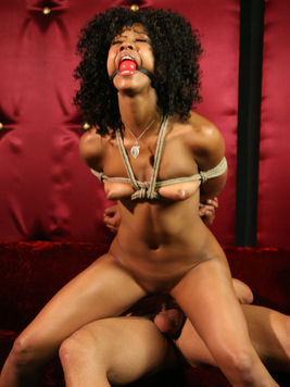 Bound ebony chick Misty Stone is forced to ride the Derrick Pierce's hard pecker.
