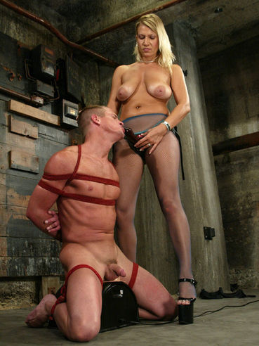 Hard tied slave man Plew gets fucked doggy style by big breasted domina Xana Star