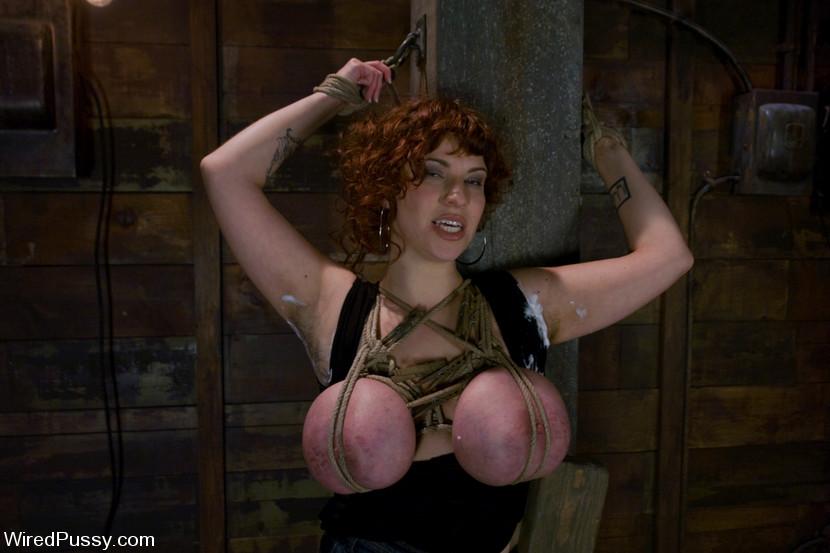 Lesbian anal fisting x hamster