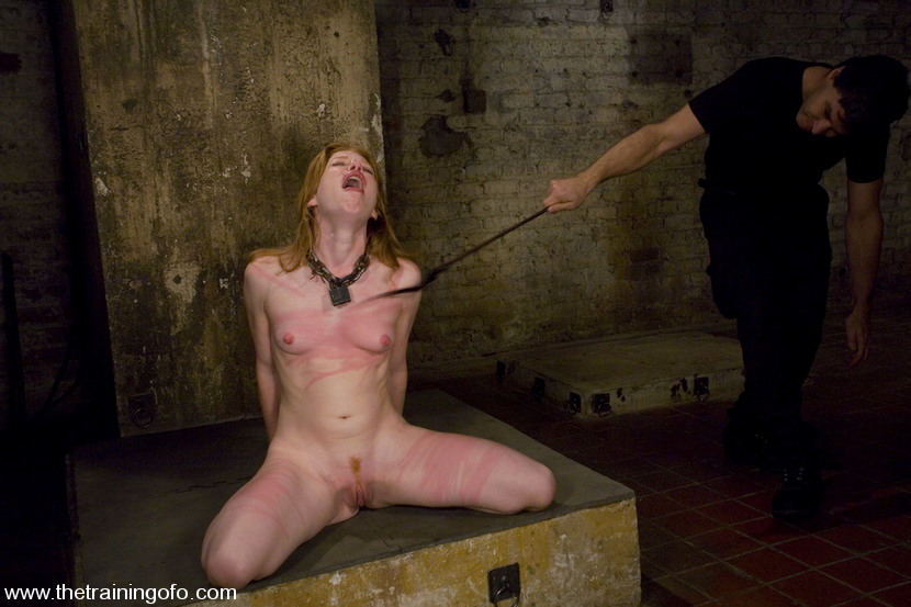 training of bdsm young girl jpg 1200x900