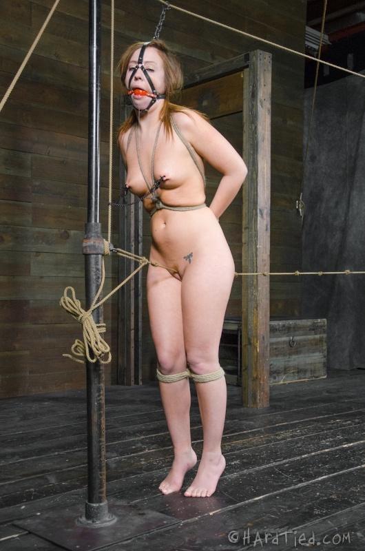 Bondage Blowjob Training Dildo