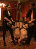 Lilla Katt and her friends get into bondage, their bodies are tied and stretched by fetish lovers.