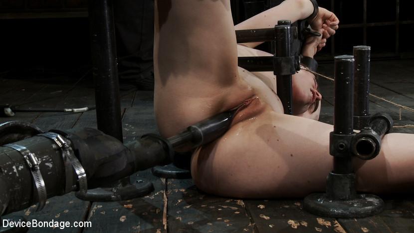 Seda bondage model
