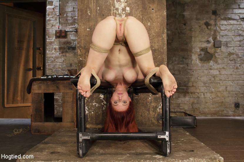 Hog tie redhead