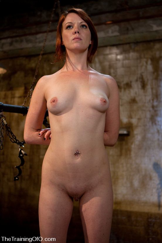 bdsm shaved pussy