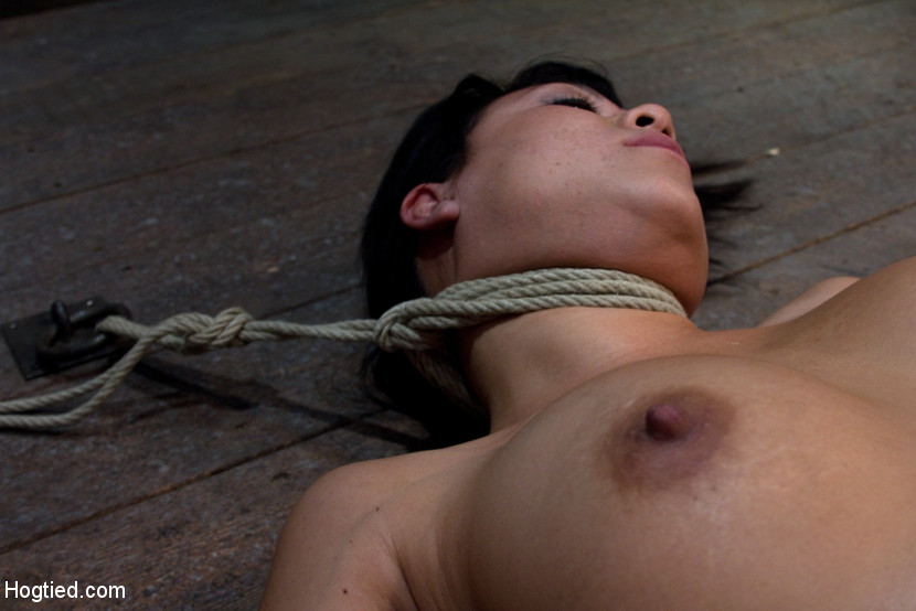Hogtied and shaved