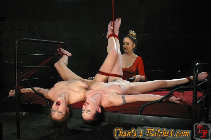 Hentai bondage sex