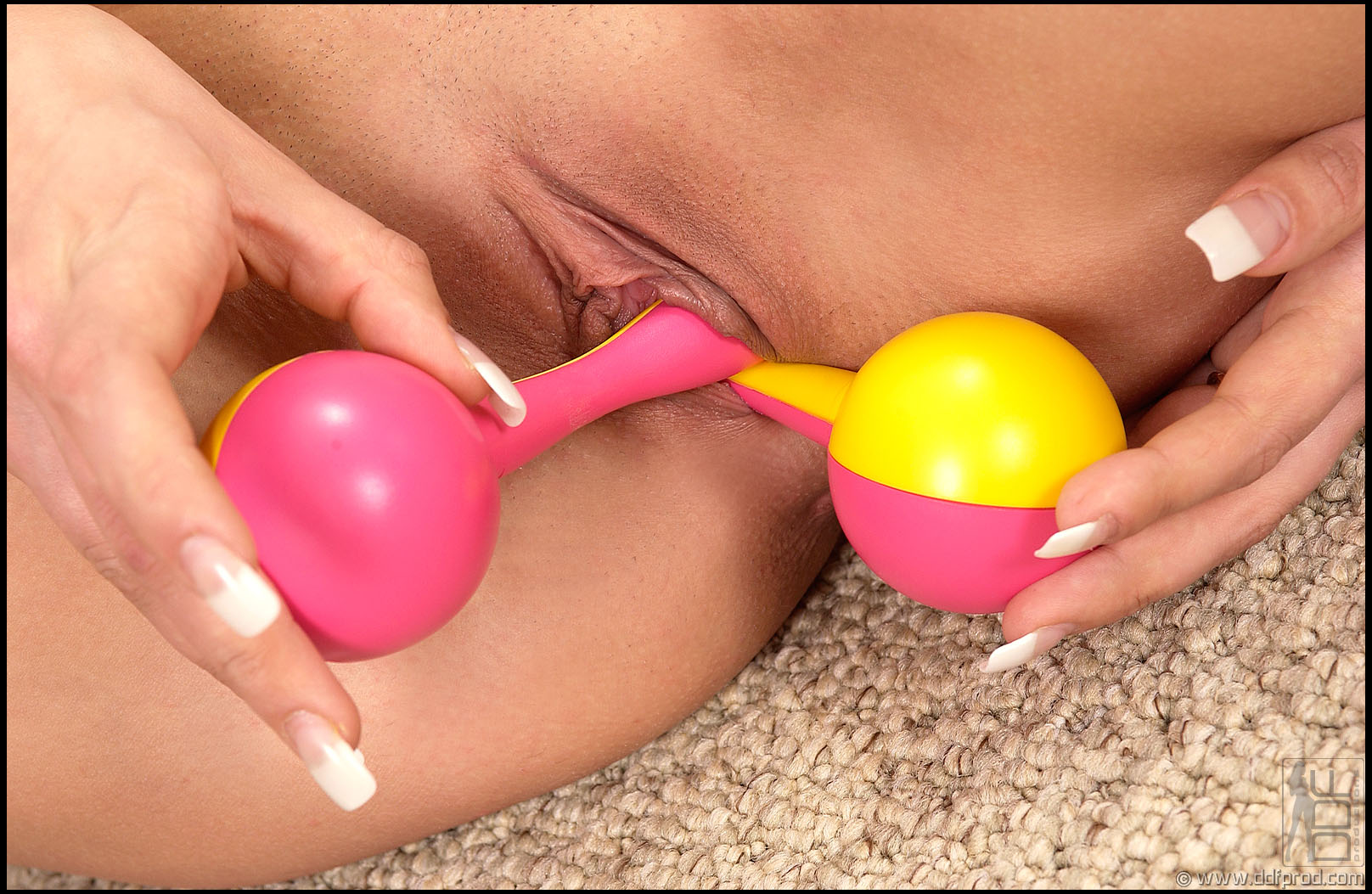adult toy priscillas
