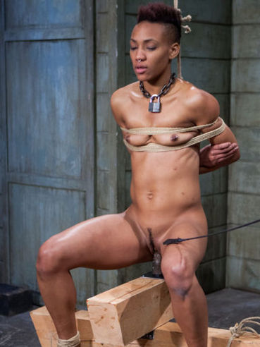 Aquaphilia is what this bondage sex clip with Nikki Darling is all about.