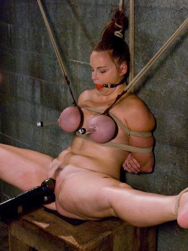 purple tits up tied