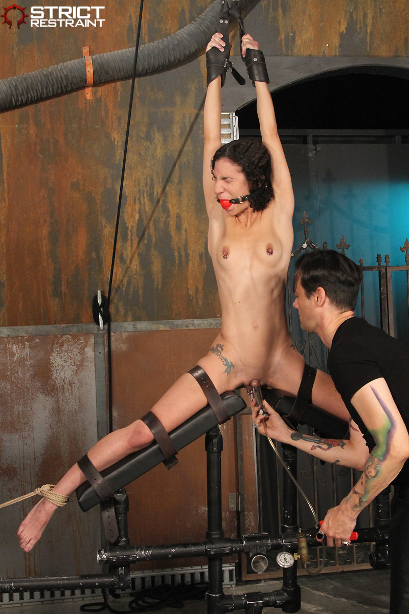 Bdsm females punished pictures thumbnails