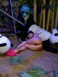 Gorgeous chick Ashli Orion gets pumped by a ton of dudes dressed in panda uniforms