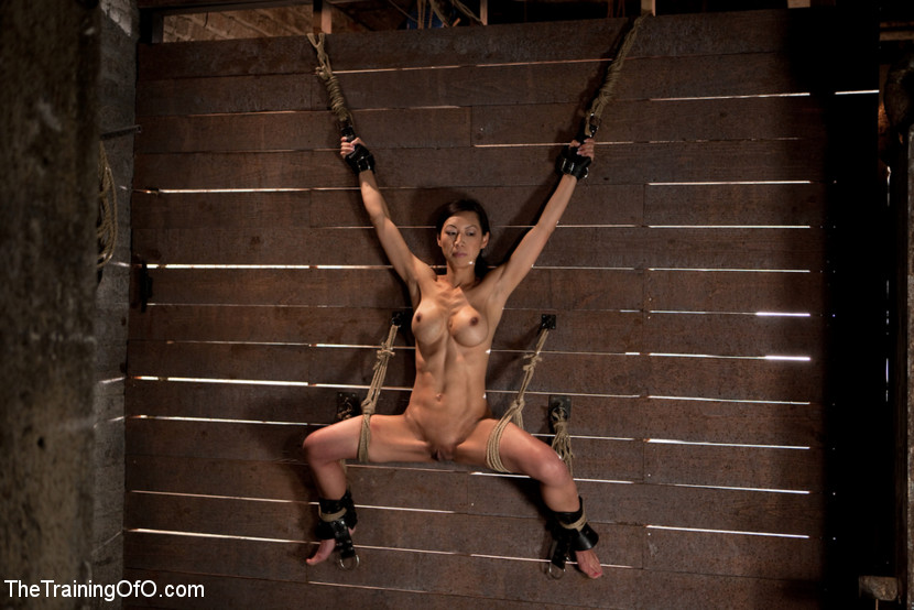 bondage and discipline photos coeds