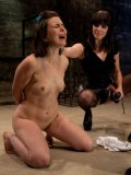 Juliette March on the floor hogtied and getting her slit vibrated by bondage babe Bobbi Starr.