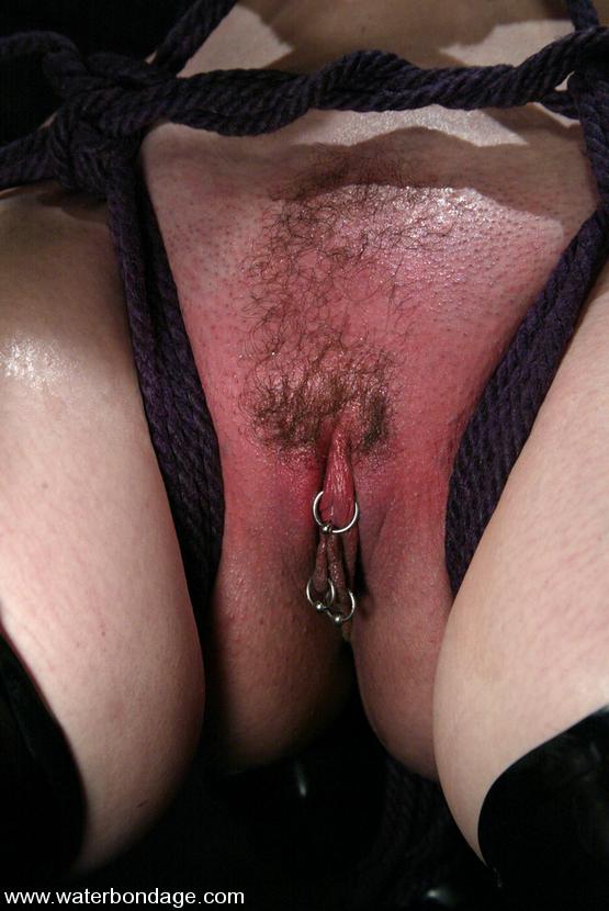 Claire adams bondage these