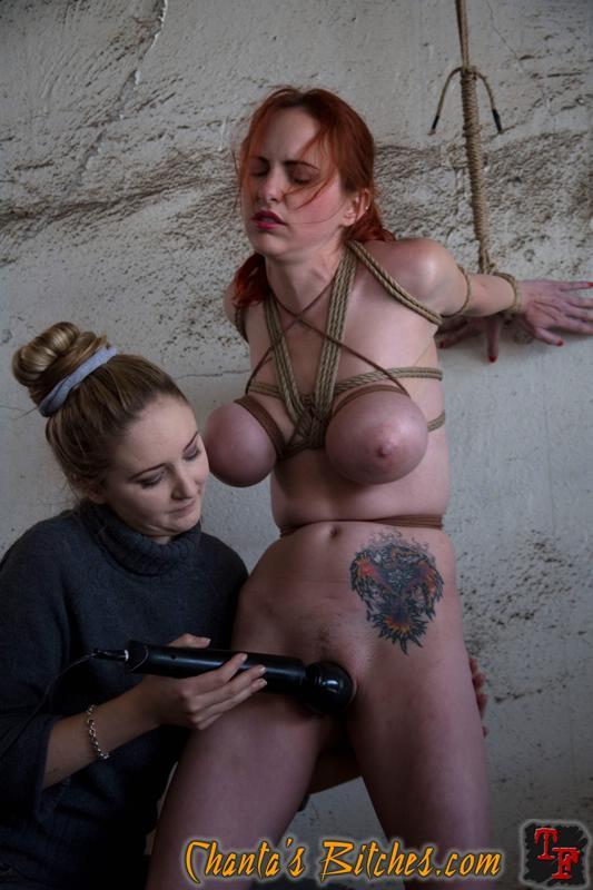 Maria ozawa japanese porn