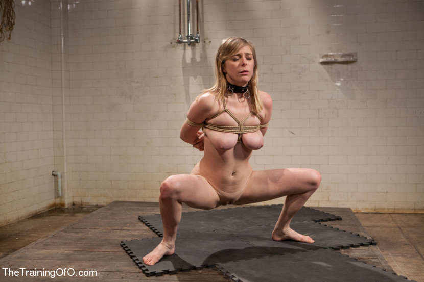 Penny pax bondage