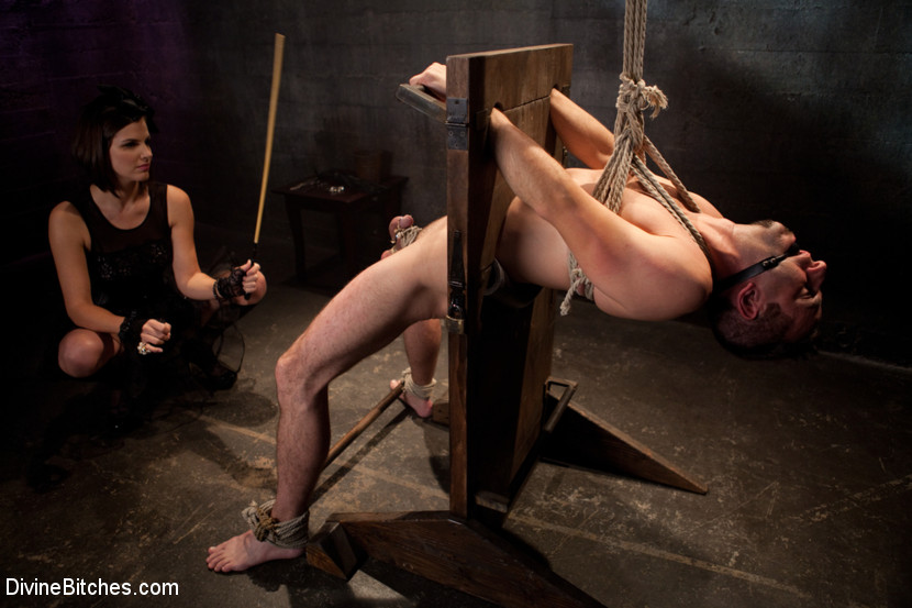 cfnm fem dom bdsm bondage chair