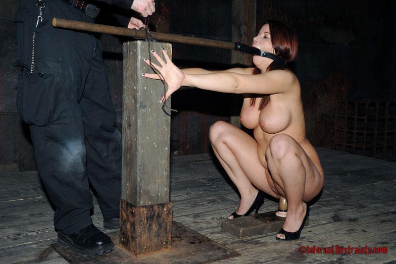 Sarah blake damsels in bondage xcritic
