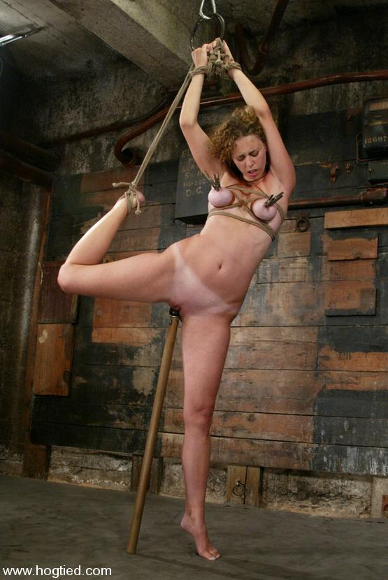 Can Shaved and punished something is