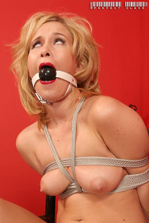 sasha knox perfect slave