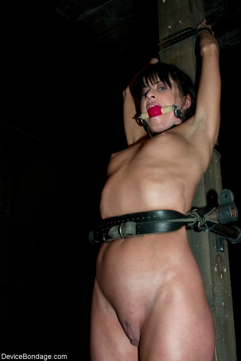Cecilia vega nude naked