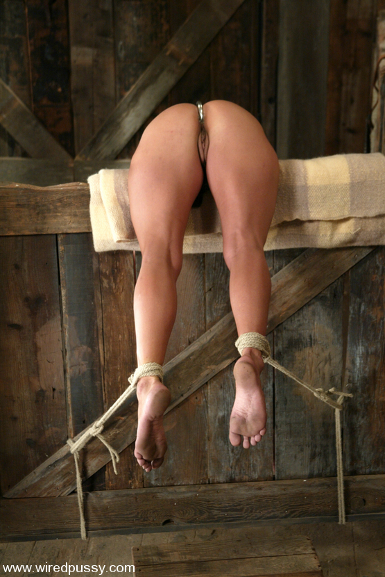 Something is. long term bondage slave bdsm