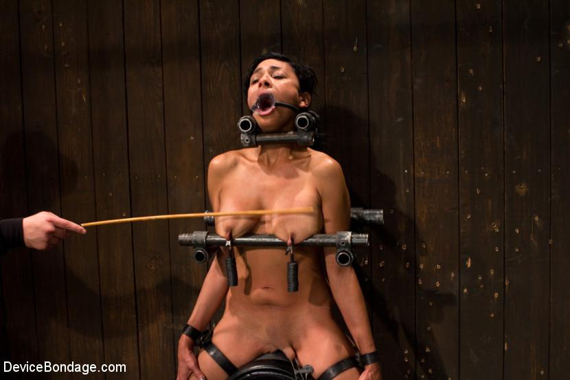 Free porn videos bondage xxx
