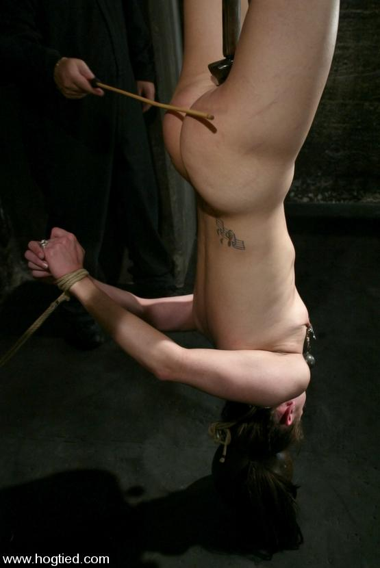 BDSM Files 042 : Maya MatthewsEvie - Videos -
